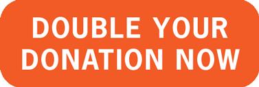 Double Donation Button